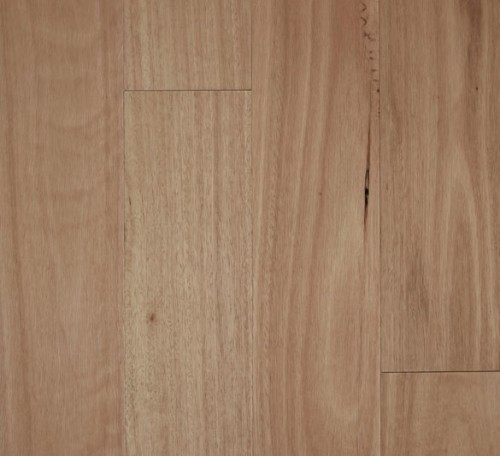 Fiddleback 12mm Semi-Gloss Blackbutt