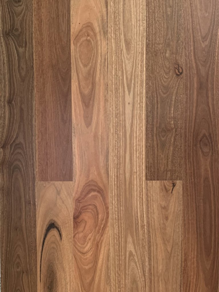 Federation Plank Spotted Gum
