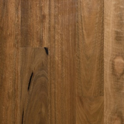 Preference Select Brushed Matt Spotted Gum