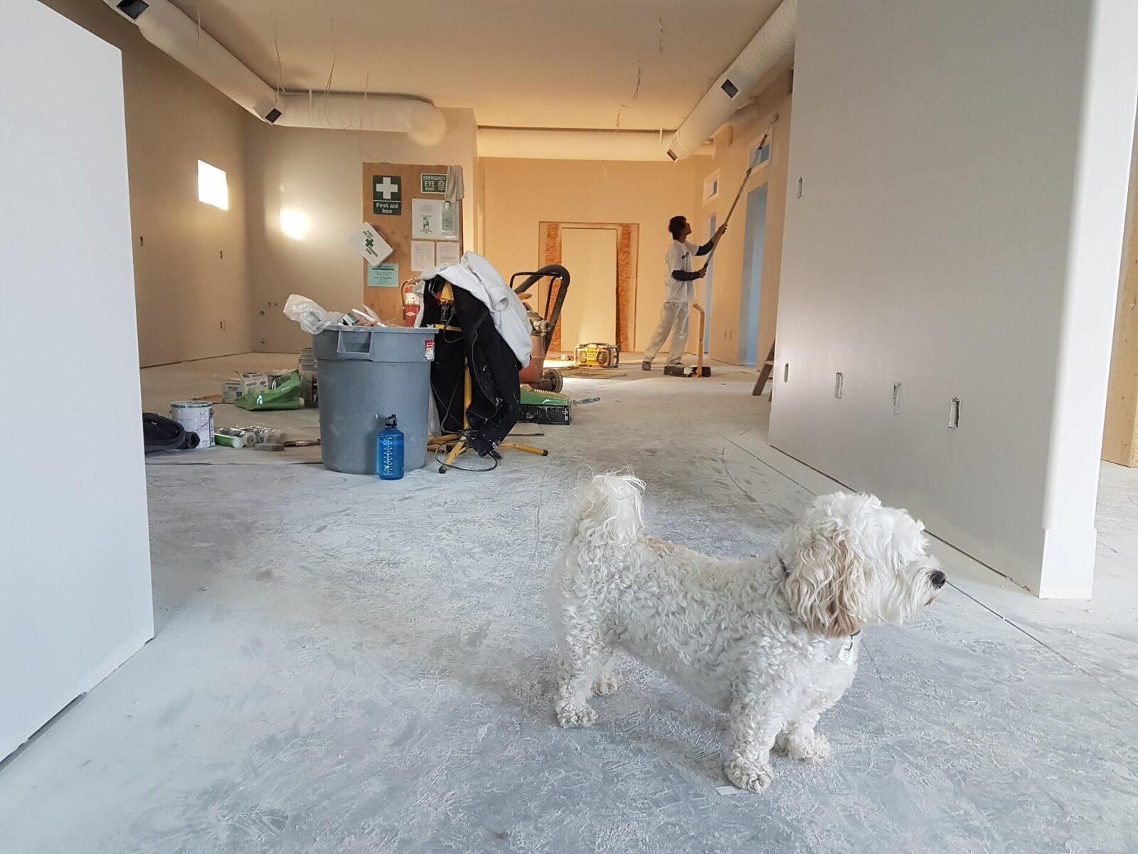 Barefoot Timber Flooring Installation Team
