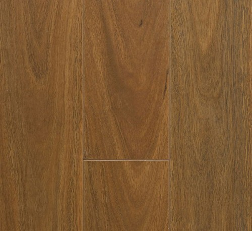 Preference Classic Mountain Spotted Gum