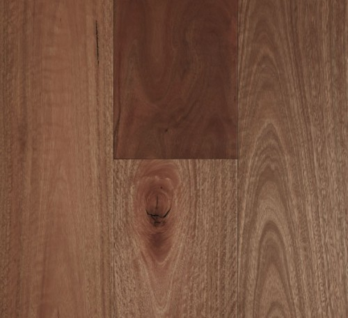 Fiddleback 14mm Smooth Matt Spotted Gum