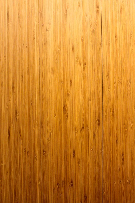 BT Classic Bamboo Carbonated Amber Vertical